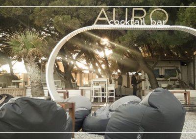 auro-3